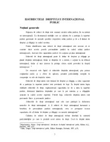 Statul - Izvor de Drept International Public - Pagina 3
