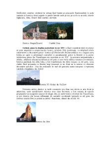 Arta Medievala Romaneasca Sec XIV-XV - Pagina 3