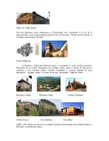 Arta Medievala Romaneasca Sec XIV-XV - Pagina 5