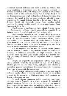 Introducere în Istoria Dreptului - Pagina 5