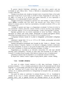 Împăduriri - Pagina 5