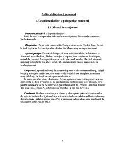 Bolile și Dăunătorii Prunului - Pagina 4