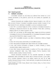 Master in Dreptul Afacerilor - Institutii de Drept Fiscal - Pagina 4