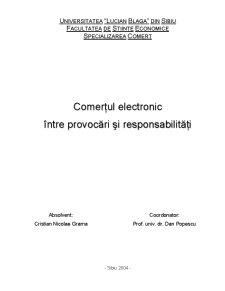 Comerțul Electronic între Provocări și Responsabilități - Pagina 1