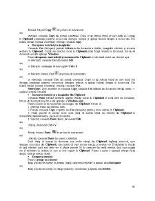 Programele de Aplicație Microsoft Office - Pagina 5