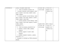 Proiect Didactic Aplicativ - Pagina 4
