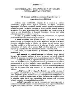 Contabilitatea - Componentă a Sistemului Informațional Economic - Pagina 1