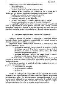 Contabilitatea - Componentă a Sistemului Informațional Economic - Pagina 2