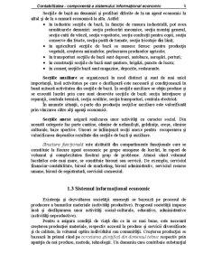 Contabilitatea - Componentă a Sistemului Informațional Economic - Pagina 3