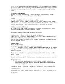 Dreptul Contenciosului International - Pagina 2