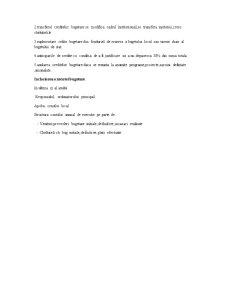 Bugetele Locale - Pagina 5