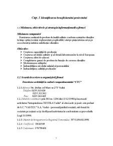 Sistemul Informational intr-o Fabrica Textila - Pagina 3