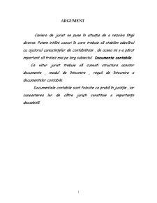 Documente Contabile - Notiune, Importanta, Clasificare - Pagina 2