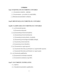 Documente Contabile - Notiune, Importanta, Clasificare - Pagina 3