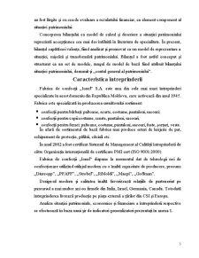 Conținutul și Modul de Întocmire a Bilanțului Contabil - Pagina 5
