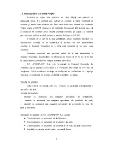 Analiza și Dezvoltarea SC Voriflor SA - Pagina 4