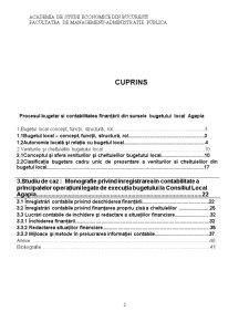 Lucrare Practica - Bazele Contabilitatii Bugetare - Local Agapia - Pagina 2
