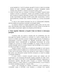 Sistemul Asigurărilor pentru Șomaj - Pagina 5