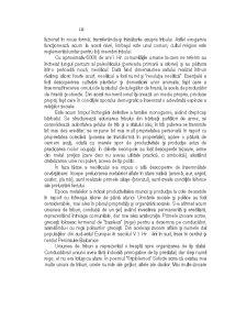 Istoria Statului si Dreptului - Pagina 2