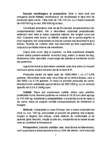 Ferma de Vaci de Lapte cu Intretinere Libera - Pagina 5