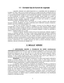 Managementul Integrat al Patogenilor si Daunatorilor Culturii de Varza - Pagina 4