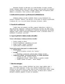Audit Intern - Audit Extern - Guvernanta Corporatista - Pagina 3