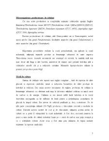 Celulaza - Pagina 3