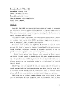 Plan de Afacere - SC E-zy SRL - Pagina 1