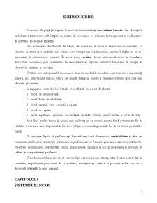 Proiect de Contabilitate si Informatica - Intocmirea unui Plan de Credite la o Banca - Pagina 3