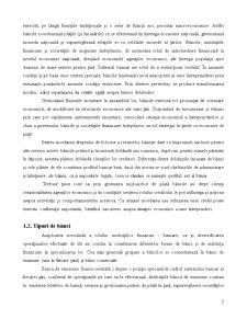 Proiect de Contabilitate si Informatica - Intocmirea unui Plan de Credite la o Banca - Pagina 5