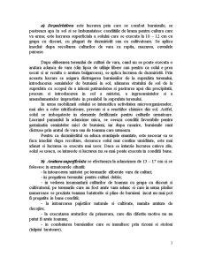 Clasificarea Araturilor - Pagina 3