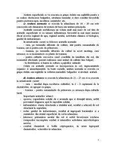 Clasificarea Araturilor - Pagina 4