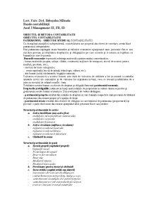 Bazele Contabilității - Pagina 1