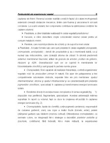 Ecofiziologie Vegetala - Capitolul 1 - Pagina 2