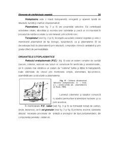 Ecofiziologie Vegetala - Capitolul 2 - Pagina 5