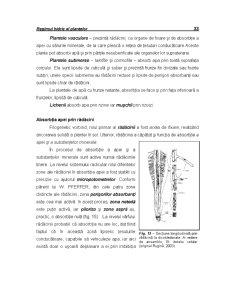 Ecofiziologie Vegetala - Capitolul 3 - Pagina 2