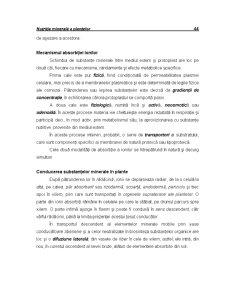 Ecofiziologie Vegetala - Capitolul 4 - Pagina 3