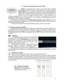 Lucrari Practice de Fiziologie Vegetala - Pagina 4