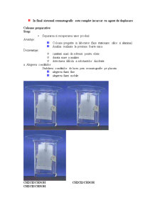 Cromatografia de Lichide si Aplicatiile Sale - Pagina 2