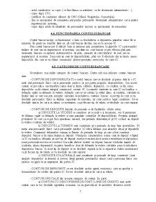 Contabilitatea Institutiilor de Credit - Pagina 5