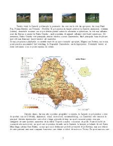 Amenajarea Agroturistica - Zarnesti - Pagina 5