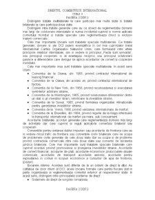 Drept Comercial International -2- - Pagina 2