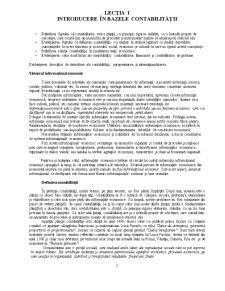 Introducere în Bazele Contabilității - Pagina 1
