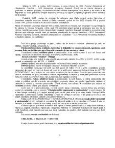 Introducere în Bazele Contabilității - Pagina 4