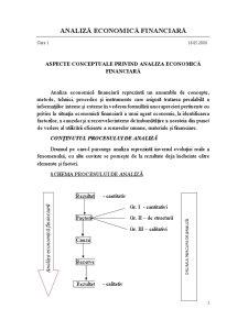 Analiză Economică Financiară - Pagina 1