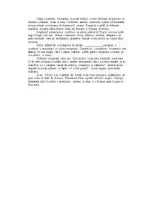 Drept Comunitar Curs 1 - Pagina 3