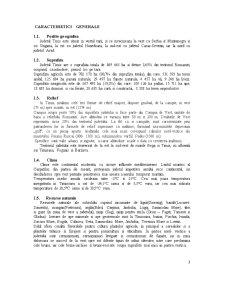 Economia Agroalimentara si a Mediului - Pozitia Judetului Timis in Cadrul Regiunii 5 Vest - Pagina 3