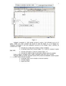 Curs Excel - Pagina 3