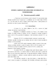 Proiectarea unui Flux Informational privind Contabilitatea Stocurilor de Produse si Marfuri - Aurora SA - Pagina 3