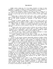 Identificarea Riscurilor de Audit - Pagina 2